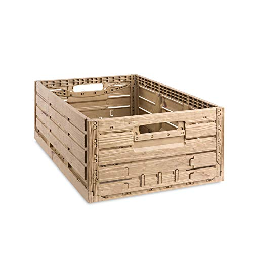 Klappbox 54 x