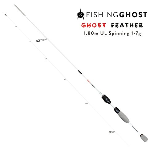 FISHINGGHOST Canne à pêche - Canne à lancer - Canne...