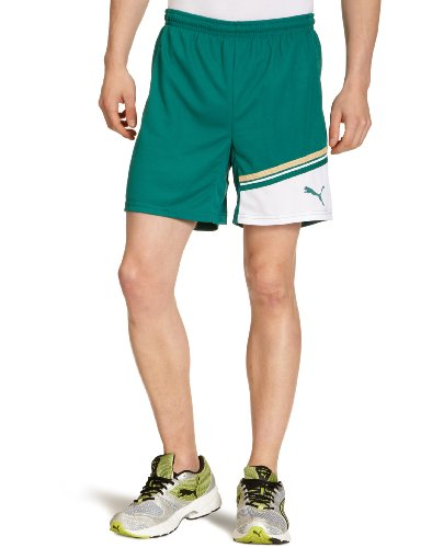 PUMA Herren King Shorts with inner slip, team green-white, M,  700999 03 (Dri-fit-puma)