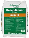 25 kg BIG Profi Rasendünger HERBST 6+5+12 für ca. 700 m²