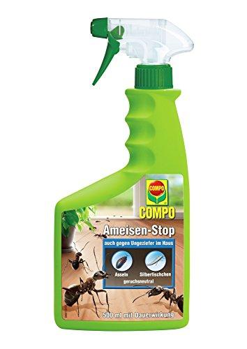 COMPO Ameisen-Stop, Insektenspray mit Langzeitwirkung, 500 ml