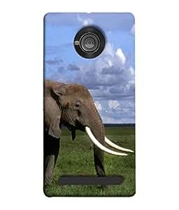 PrintVisa Standing Elephant 3D Hard Polycarbonate Designer Back Case Cover for YU Yunique