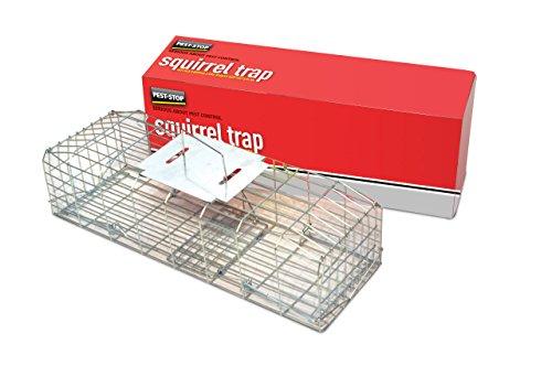 Pest-Stop Piège à écureuils en acier galvanisé