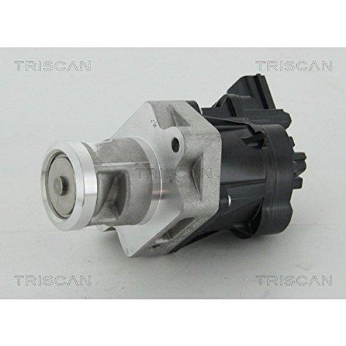 TRISCAN 8813 24083 AGR-Ventile