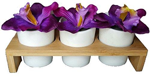 Générique Décoration Orchidées Support en Bois et Porcelaine