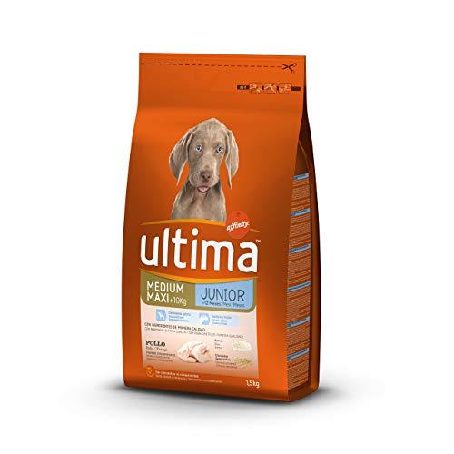 Ultima Cibo per Cani Medium Maxi Puppy con Pollo - 1,5 kg
