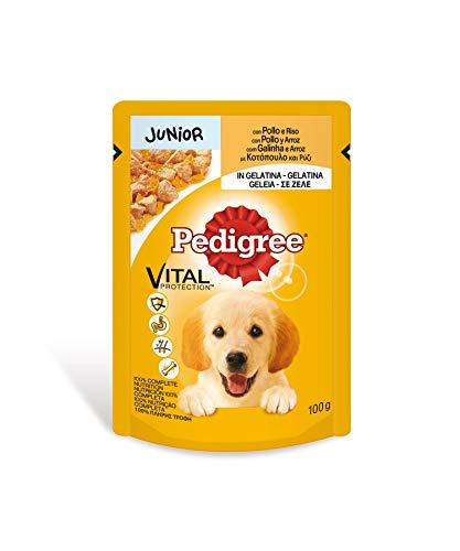 Pedigree Hundefutter Nassfutter Junior mit Huhn und Reis in Gelee, 24 Portionsbeutel (24 x 100g)