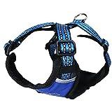 MNC Pet Geschirr x-Sport 3D Mesh, groß, blau