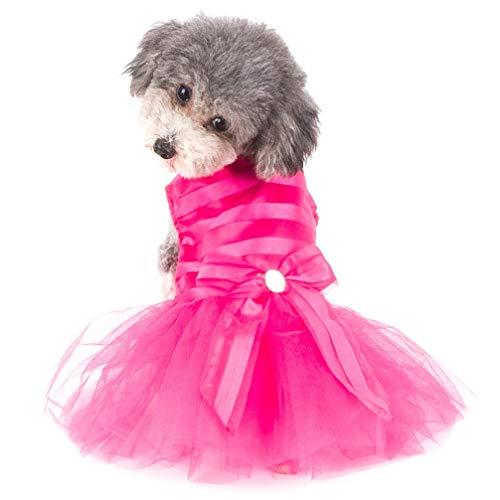 LLYU Neue Bogen gestreifte Prinzessin Kleid Welpen/Katze Mädchen Tüll Pettiskirt Rock Welpen Kleidung (Farbe : Pink, größe : Xs) -