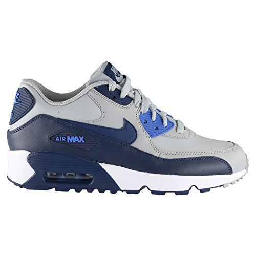 Nike Unisex-Kinder Air Max 90 Ltr Gs Sneaker, Grau (Wolf Grey/Binary Comet Blue/White), 38 EU (Nike Air Max 90 Pink Und Schwarz)