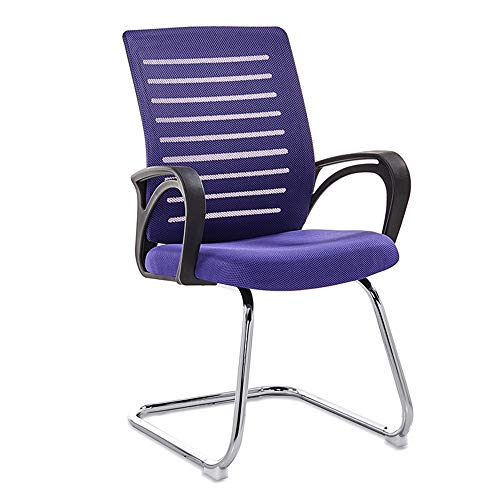 Biezutu Bürovorsitzender Ergonomic Swivel Executive Mesh Chair for Office Work Task Computer Desk Chair,Purple