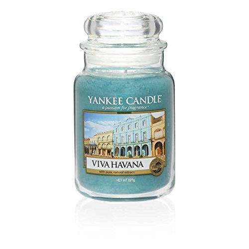 YANKEE CANDLE Viva Havana Kerze im Glas Türkis L