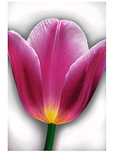 YKCKSD Puzzle 1000 Teile, Jigsaw Puzzle für Erwachsene und Kinder,Tulip Flower, Nahaufnahme, Digital Digitale Tulip