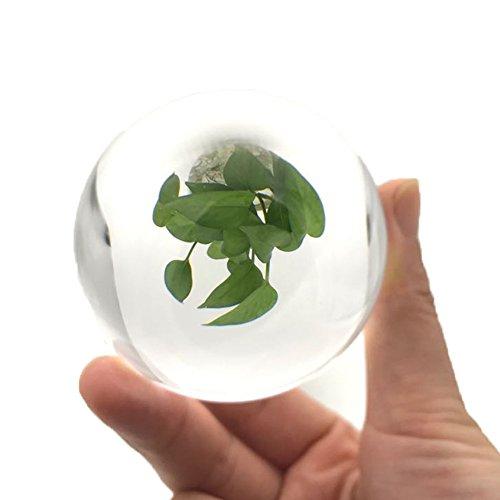 QIJOVO 60mm K9 Bola de Cristal para Fotografia Bola de Cristal Transpa