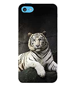 Vizagbeats bengal tiger Back Case Cover for Apple iPhone 6
