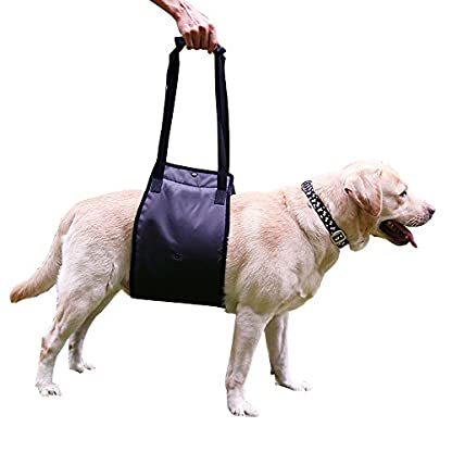 Dog Lift Support Harness Help Elderly Injured Disabled Arthritis ACL Pet Stand Up/Walk/Climb Stairs/Crawl into Car… 1