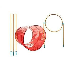 Outward Hound 42003 Zip and Zoom Trousse Agilité Extérieure Jouet Pour Chien