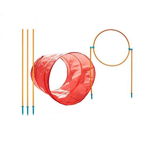 outward-hound-42003-zip-and-zoom-trousse-agilite-exterieure-jouet-pour-chien
