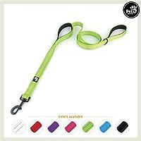[Gesponsert]Pets&Partner Hundeleine aus Nylon mit 2 Griffen in verschiedenen Farben für mittel große und große Hunde passend zu Halsband und Geschirr, Grün