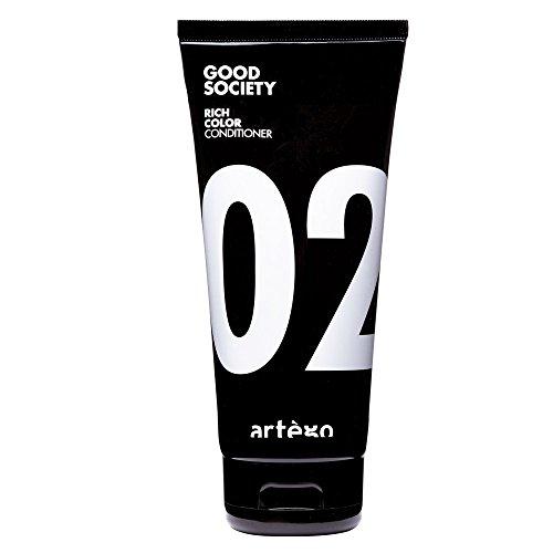 ARTEGO Good Society 02 Rich Color Conditioner (Rich Cura Conditioner)