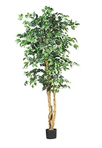 Dekoflower - Künstlicher Ficus Benjamini grün ca. 190 cm