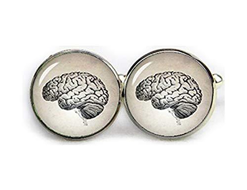 Gemelos con cerebros