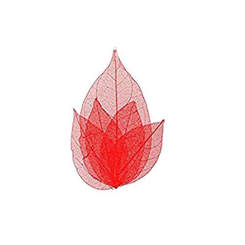 Feuilles Squelette pour Ongles - Nail Art - Couleur Rouge
