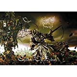 LPG International Children of Bodom Reckless 4Ever Fabric Poster Print, 30 by 40-Inch by LPG International