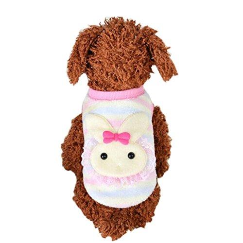 Saingace Hundbekleidung Hunde Kleider Haustier Kostüm Bekleidung Haustier-Katze-Hundewelpen-warme Knit-Mantel-Kleidung-Weste-Jacken-Kleid-Kostüm (Sie Machen Kostüm Eigenen Ihre Kleidung Halloween Mit)