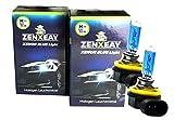 ZENXEAY H11 Xenon Optik Auto Lampe, Kfz Leuchtmittel, 55W 12V Super White Halogen, 2 Stück, passgenau für diverse Pkw