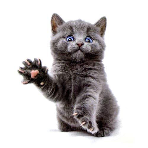 n temporär - Aggressive Katze / Cat - grau - 4,8 x 6 cm ()