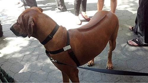 Würge-freies, zerr-freies, von vorne führendes Hundegeschirr, Originalausführung, Größe 3 kg bis 113 kg, 8 Farben -