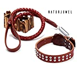 Naturjuwel Luxus Hundeleinen-Set, 2er Set aus Hundehalsband und passender Hundeleine, Leder mit doppelreihigen Nieten und flexibeler Dämpfungsfeder aus Edelstahl (L, braun)