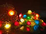 Glimmer Lightings Multi-colour Flower Elegant Small Decoration String Lights Diwali Special Home Decoration Gifts Rice Copper Wire Lights Diwali LED Wedding Christmas Party Home Quirky Unique Gifts Copper Wire (Made In India)