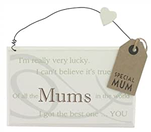 Of All The Mums In The World I Got The Best ... You Plaque Mothers Day Gift (GW402 m) Plaque For Mum Includes Gift Tag