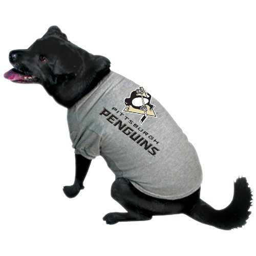 NHL Pittsburgh Penguins Pet T-Shirt, Team (Hut The Kostüm Mädchen Cat In)
