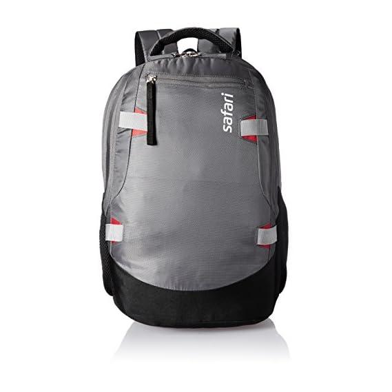 Safari Polyester 40 Ltrs Grey Laptop Backpack (Brisk)