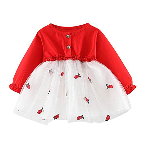 Realde--Baby Mädchen Langarm Mesh Patchwork Mini Kleid Stickerei Erdbeer-Print Strandrock Prinzessin Kleinkind Neugeborenes Kinderkleidung Partykleid Festlich Babybekleidung Abendkleid Kleidung