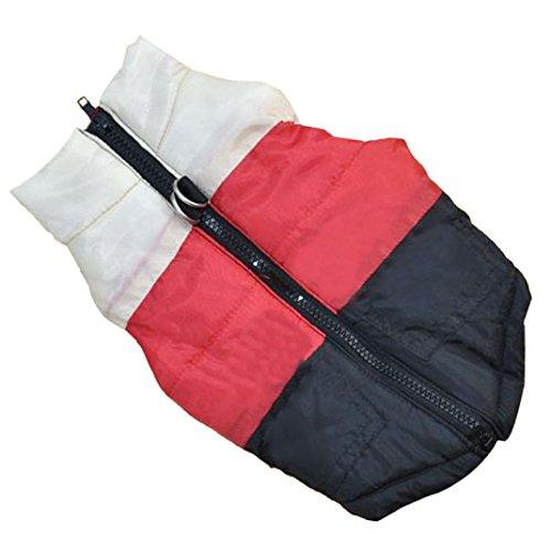 kaíki 4Größe Fashion Pet Tuch Hundetuch Hund Winter Tuch Baumwolle NEU (Pet-tücher Für Große Hunde)
