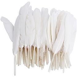ERGEOB Les plumes d'oie 100 pièces Plumes naturelles 10-15 cm / 4-6 pouces de long pour Art Design Artisanat Carnaval Lundi des Roses Halloweenfest différents. Couleurs