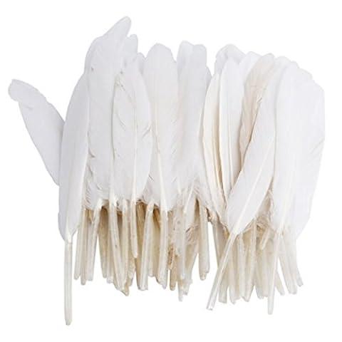ERGEOB® Les plumes d'oie 100 pièces Plumes naturelles 10-15 cm / 4-6 pouces de long pour Art Design Artisanat Carnaval Lundi des Roses Halloweenfest différents. Couleurs