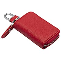 Lion Bolong Car Key Chain With Leather Case