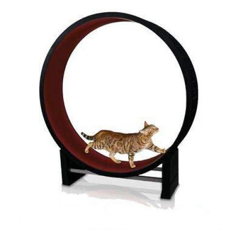 Merkloos Cat in Motion looprad voor katten assorti Ø 131 cm