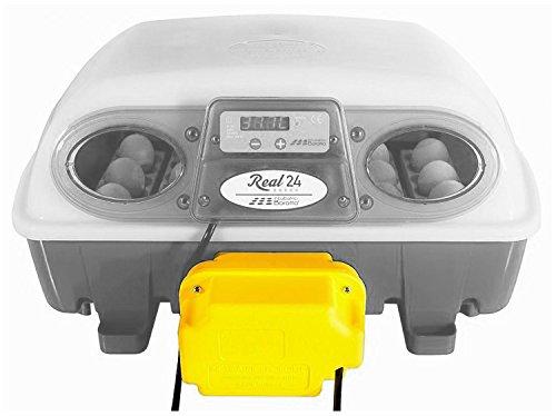 Borotto - Incubadora para huevos, digital, semiautomática