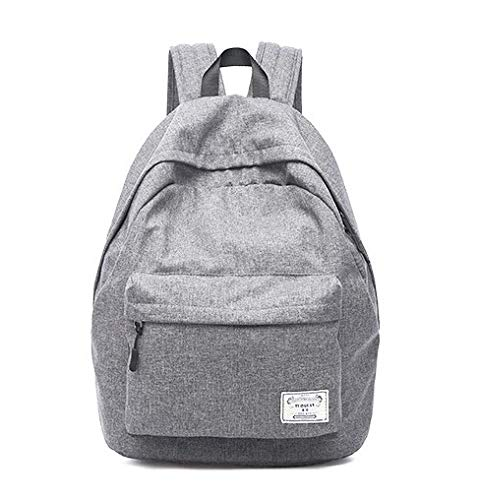 Diswa Classical Unisex Backpack for Women Nylon Child School Bag Special Use for Picnic 30 * 40 * 16 cm (Gray) Image 4