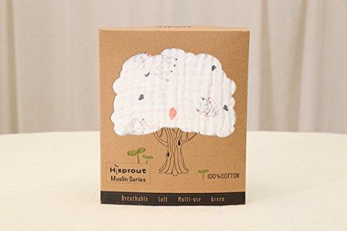 BabyIn 1 pack Certified 100% Baumwolle Organische Muslin Swaddle Weiche Baumwolle Empfangen Decken Baby-Dusche oder große Kinderzimmer Geschenk (6-layer)