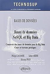 Bases de données NoSQL et Big Data : Concevoir des bases de données pour le Big Data : cours et travaux pratiques