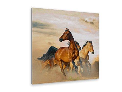 Wilde Pferde Alu-Dibond Bild Butlerfinish® ALB00251 Quadratisch 80 x 80cm gebürstetes Aluminium-Bild Wandbild