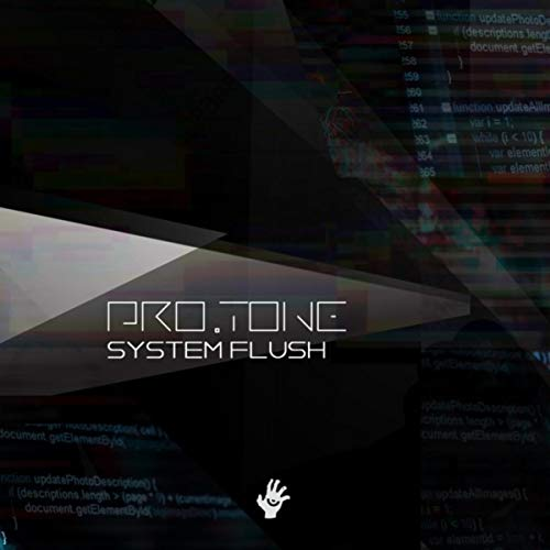 System Flush -