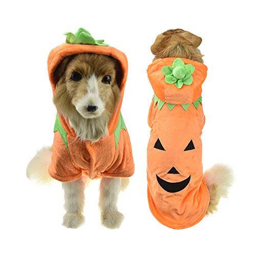 Katze Kostüm Orange - FLAdorepet Halloween Haustier Katze Hund Kürbis Kostüm Winter Warm Big Dog Puppy Baumwolle Gepolstert Jacke Mantel Golden Retriever Funny Big Dog Kleidung, 4XL, Orange